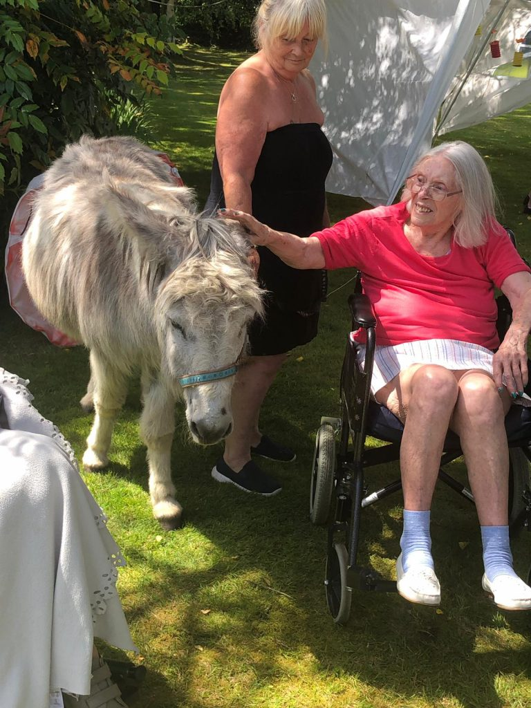 A Waterloo Care Home resident strokes a donkey