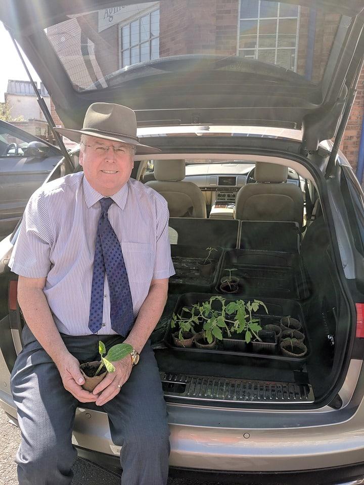 Man selling vegetable plants