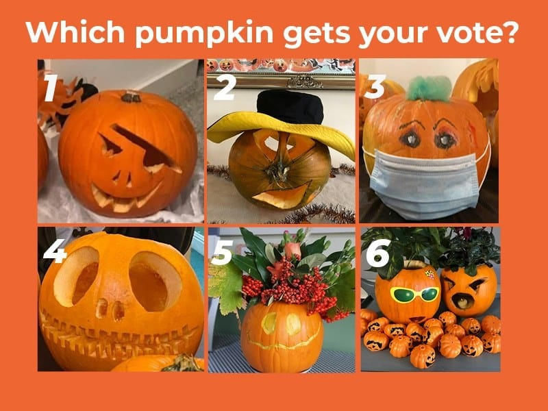 Six care home pumpkins went head-to-head on the Agincare Facebook page