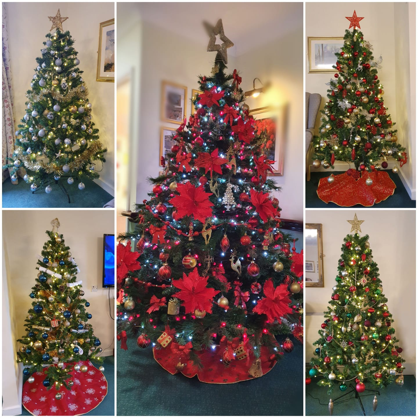 Christmas trees at Rochester Care Home in Kent